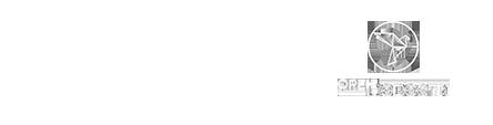 Отзывы Digital агентства TargBox